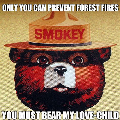 Only You Can Prevent Forest Fires Meme - only you can prevent forest fires you must bear my love