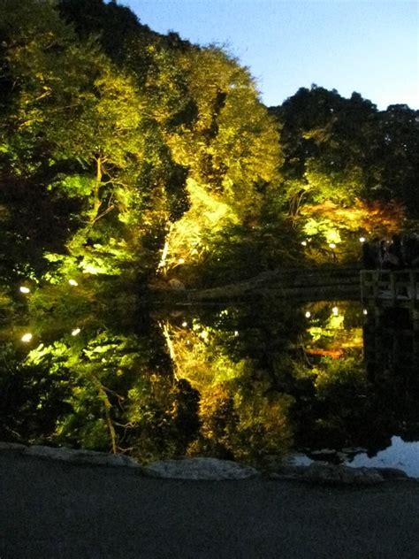 garden lights lighting up the the way of words