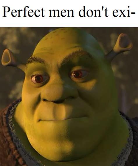 Shrek Meme - image 723418 shrek know your meme