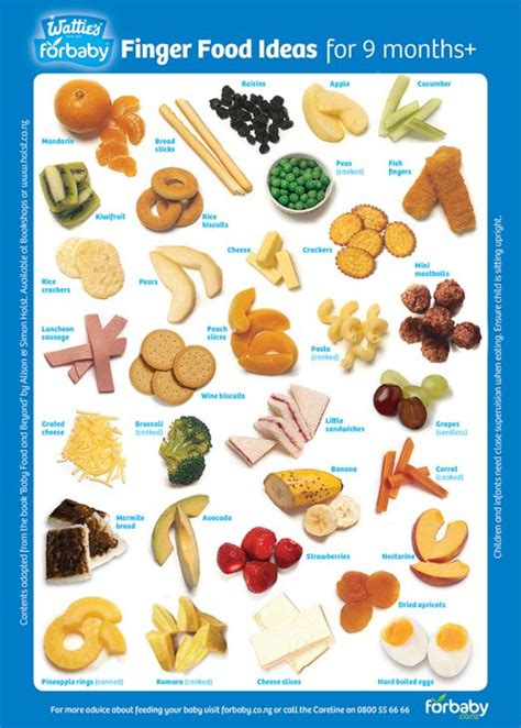 Pdf Foodie Recipes Babies Toddlers by Baby Finger Food Ideas Finger Food Recipes