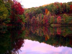 fall foliage tickner canoes