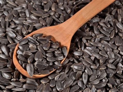 black sunflower seeds shelf bulgarian sunflower chips and sunflower hearts supplier