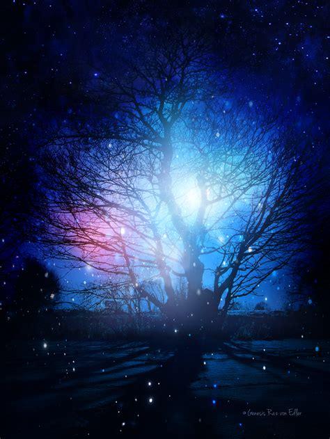 magic tree the magic tree by generazart on deviantart