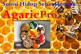 Pesan Agaricpro obat penyakit ginjal agaricpro termulti uh khasiatnya