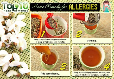 what can you give a for allergies home remedies for allergies top 10 home remedies
