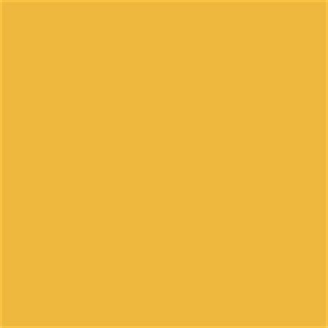 sherwin williams yellow paint color bee sw 6683 simmering summer summer paint colors