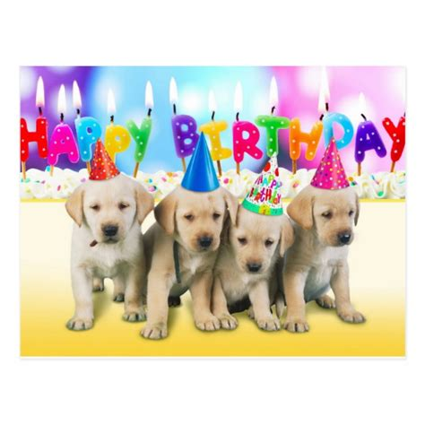 puppies happy birthday happy birthday puppies postcard zazzle