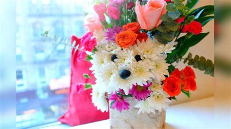 im 225 genes para crear firmas flores y mas flores imagenes de osos perritos gatos flores y mariposas fotos
