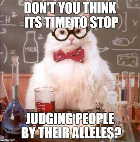 Judging Meme - science cat imgflip