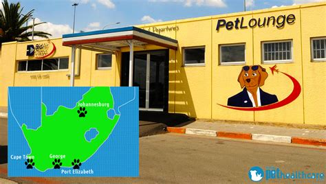 bid air petlounge is awarded a gold medal pethealthcare co za