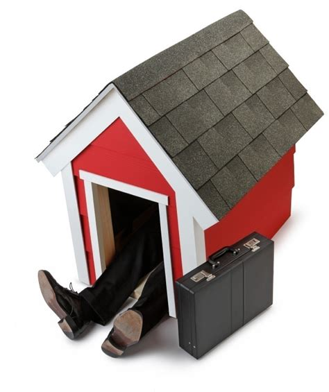 dog house for men partners in prevention are you in the doghouse