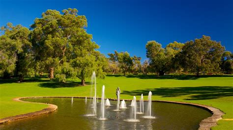 Botanical Garden Perth Park And Botanic Garden Perth Western Australia Attraction Expedia Au