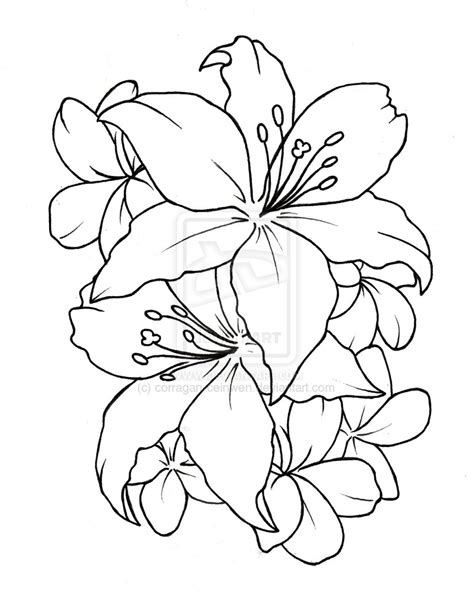 flower tattoo outline designs flower outline designs sketch coloring page