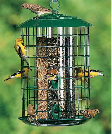 bird cage bird feeder unique bird feeder