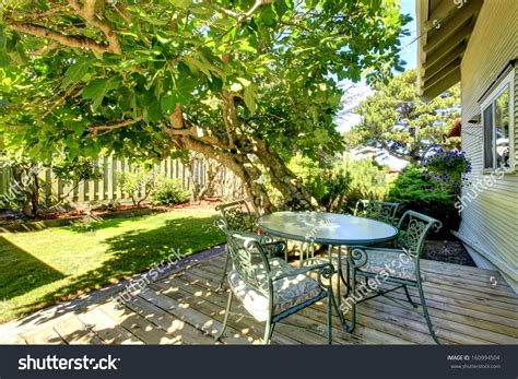 american backyard typical american backyard small old craftsman stock photo