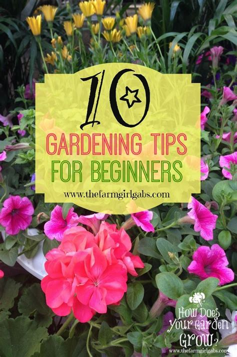 10 simple gardening tips and ideas for beginners
