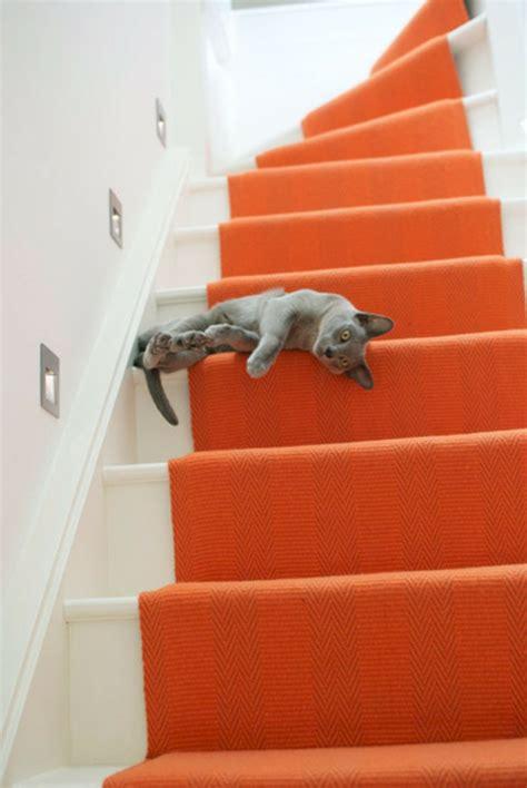 katze macht immer auf den teppich 46 aussehende bunte teppiche archzine net