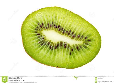 fruit section kiwi fruit cross section royalty free stock images