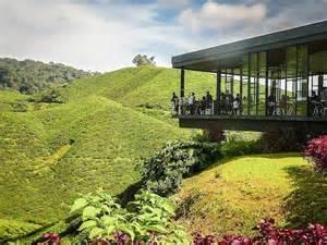 Car Rental Cameron Highlands Malaysia Monday Moment Boh Tea Plantation Cameron Highlands