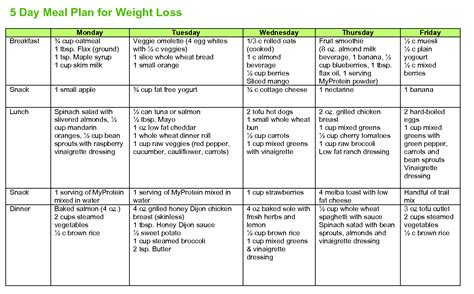 printable weight loss diet plan 5 day meal plan to lose weight fast liss cardio workout