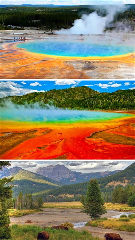 iphone wallpaper yellowstone app shopper yellowstone national park beautiful