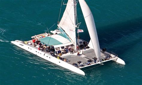 excursi 243 n con catamar 225 n mundo marino m 225 laga groupon - Catamaran Groupon Malaga