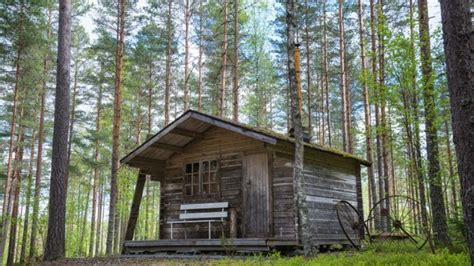 Bugs Cabins by These Prepper Theories And Ideas Are False Find Out Why