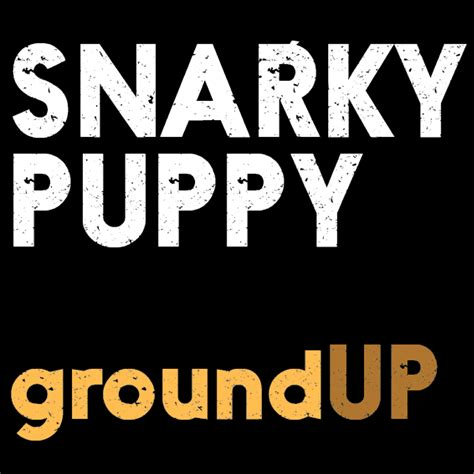 snarky puppy ground up snarky puppy fanart fanart tv