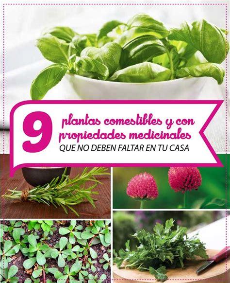 imagenes de flores y arboles 9 plantas comestibles y con propiedades medicinales que no