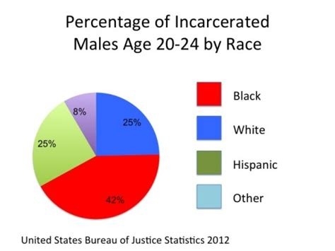 Percentage Of Population With A Criminal Record Race Statistics Raise Question Of Justice System Fairness