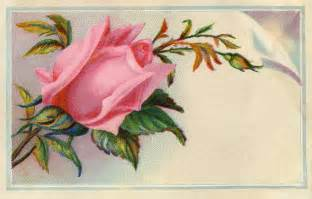 victorian graphic rose calling card the graphics fairy