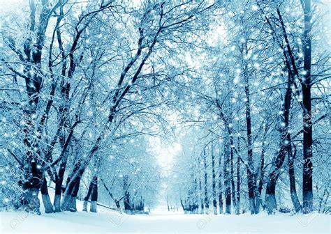 imagenes invierno para facebook 191 por qu 233 crecen m 225 s las u 241 as en verano que en invierno