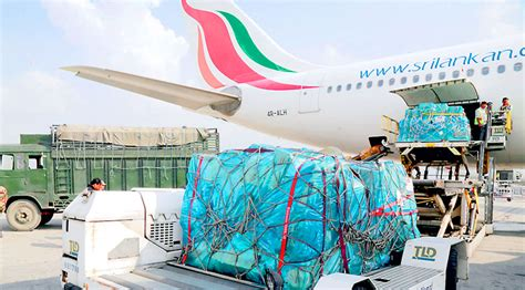 srilankan cargo sets new record for cargo handling at bia aviation voice