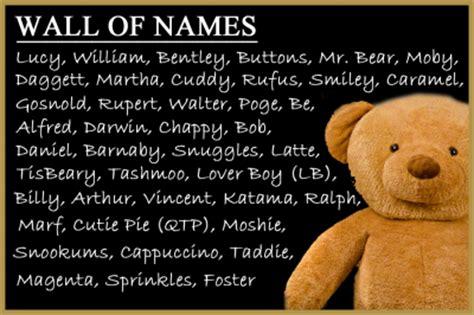 martha s vineyard teddy bear suite new teddy bear name
