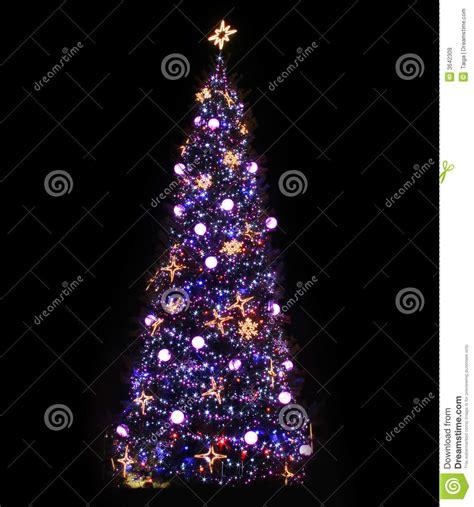 alberi di natale illuminati albero di natale illuminato immagine stock immagine di