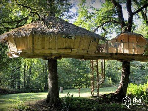 treehouse vacations matelic image treehouse vacations
