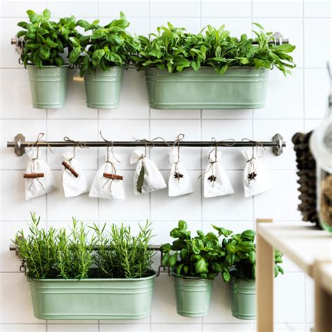 kitchen herb pots stylish storage ideas for kitchens