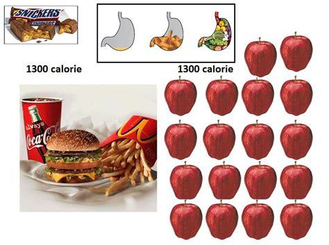 culturismo alimentazione le migliori proteine alimentazione per massa