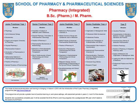 How To Prepare To Be A Pharmacist by Why Do I Want To Become A Pharmacist Essay Essay Academic