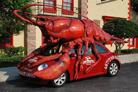 boat wraps mobile al lobster mobile yelp