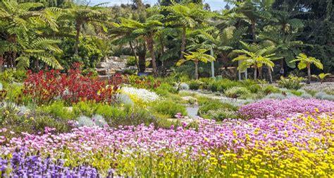 Narellan Botanical Gardens Australian Botanic Garden Mount Annan Present Annual Paper Display Camden