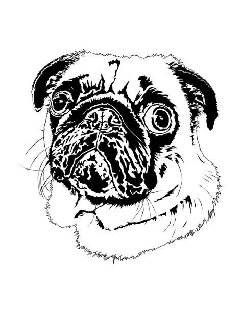 pug page pug puppy coloring page breeds picture