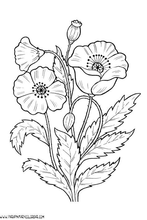 imagenes de flores para imprimir gratis dibujo flores rosas 001 dibujos y juegos para pintar y