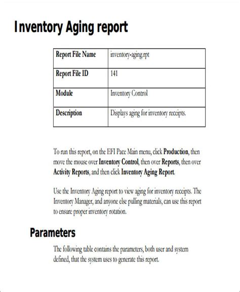 Inventory Report Format