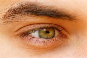 eye colors hazel what determines hazel eye color