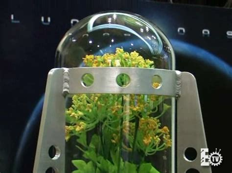 developing households want space and a garden gardens on the moon by 2012 inhabitat