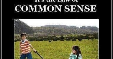 tactical reality an uncommon look at common sense firearms and tactics books 90 from tyranny common sense is missing