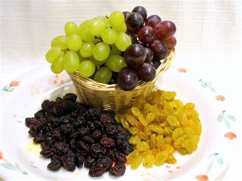 raisins dogs raisin varieties and types including seedless raisins