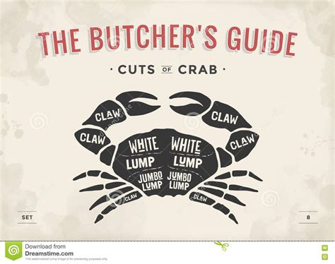 The Price Of Butcher S cut of set poster butcher diagram and scheme crab stock vector image 73207955