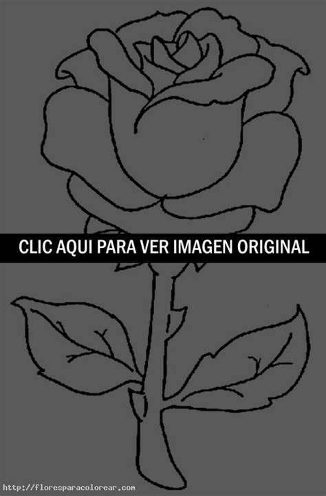 imagenes de una rosa para dibujar faciles c 243 mo dibujar una rosa flores para colorear